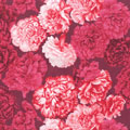 Carnations Fabric category