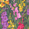 Gladioli Flowers Fabric category