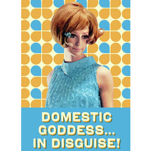 Domestic in Disguise! Retro Fridge Magnet