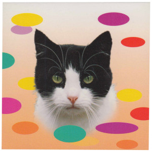 Black and White Cat Magnetic Notepad