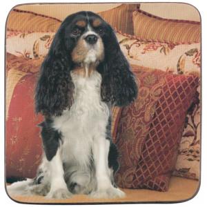 Cavalier Tri-Colour Dog Cork Backed Drink Coaster