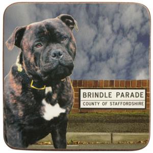 Staffordshire Brindle Dog Cork Backed Drink Coaster