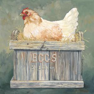 Chicken Eggs 5c 1 Dozen 12 x 12 Print