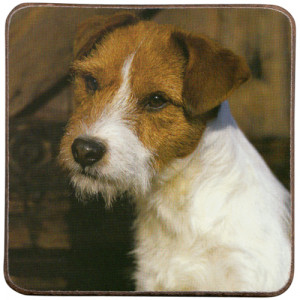 Jack Russell Long Haired Dog Cork Backed Drink Coaster