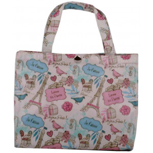 Paris Scenery Oil Cloth Small Lunch Bag