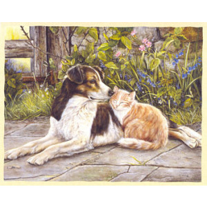 Dog and Cat Greeting Card by Shirley Deaville
