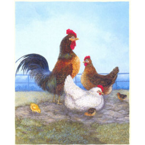 Rooster and Chickens Greeting Card by Linda Nelson Stocks