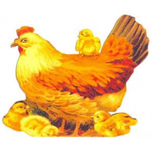 Hen & Chickens Callard & Bowser Postcard