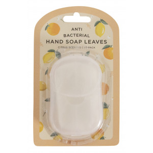 Antibacterial Hand Soap Leaves Citrus Scented