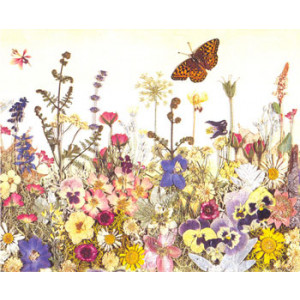 Flowers and Butterflies Greeting Card by Cheryl Welch