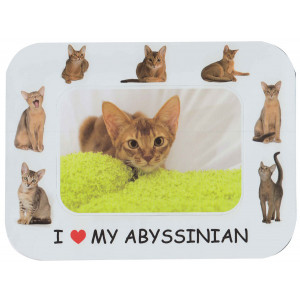 Abyssinian Cat Magnetic Photo Frame