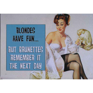 Blondes Have Fun But Brunettes Remember It The Next Day Retro Steel Sign