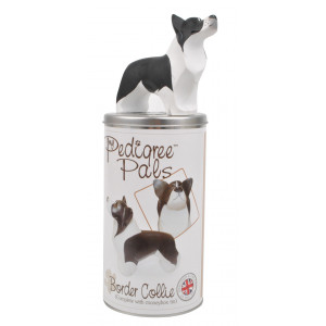 Border Collie Resin Figurine with Moneybox Tin