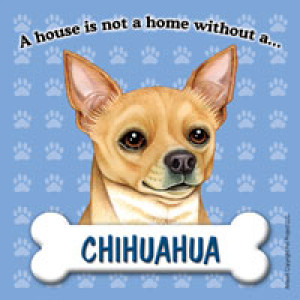 Chihuahua A House is Not A Home Without..... Dog Magnet