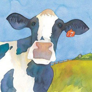 coaster-cow