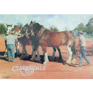Clydesdale Horses and Stockman Nostalgic Reproduction Tin Sign