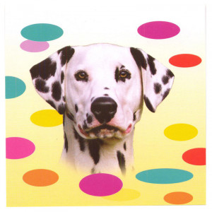 Dalmatian Dog Magnetic Notepad