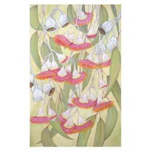 Australian Eucalyptus Leaves and Flowers Greeting Card by Joseph Austin