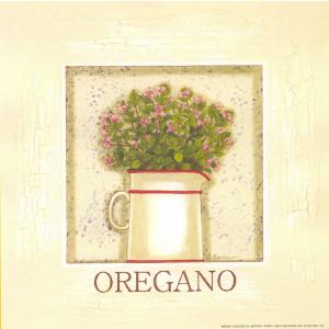 Oregano Herb 8 x 8 Print