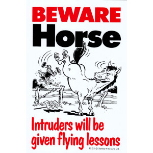 Beware Horse Intruders Will Be Given Flying Lessons Sign