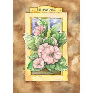 Primrose Flowers Design 5 x 7 Print