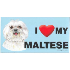 I Love My Maltese Dog Fridge Office Fun Magnet