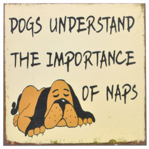 Dogs Understand The Importance of Naps Rustic Tin Sign