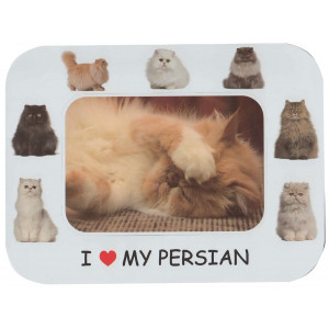 Persian Cat Magnetic Photo Frame