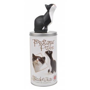Black and White Cat Resin Figurine with Moneybox Tin