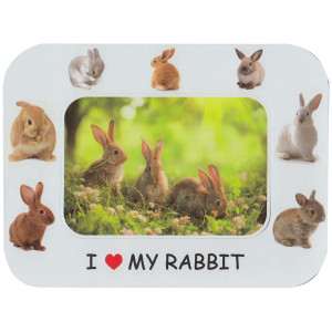 Rabbit Magnetic Photo Frame