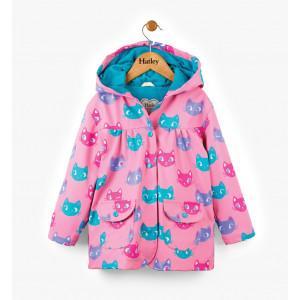 raincoat-kitten-faces