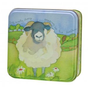Small Square Decorative Storage Tin Woolly Sheep Emma Ball