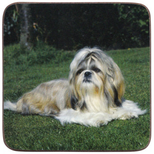 Shih Tzu Dog Cork Backed Drink Coaster