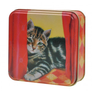 Small Square Decorative Kitchen Herb Storage Tin Tabby Cat Kitten
