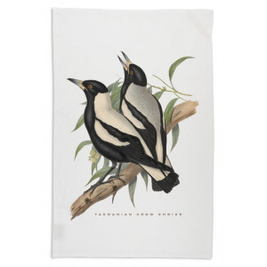 tas-crow-shrike-tea-towel-white