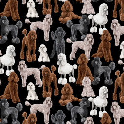 Poodles Dogs on Black Quilting Fabric
