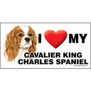 I Love My Cavalier King Charles Spaniel Dog Fridge Office Fun Magnet