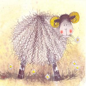 Sheep & Daisies Card