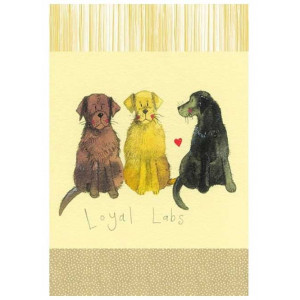 Kitchen Tea Towel 100% Cotton Loyal Labradors By Alex Clark