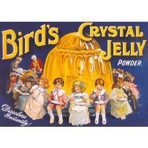 Birds Crystal Jelly Nostalgic Postcard
