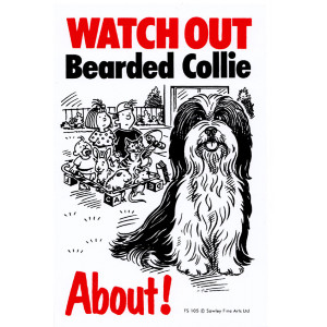 Watch Out Bearded Collie About Dog Sign