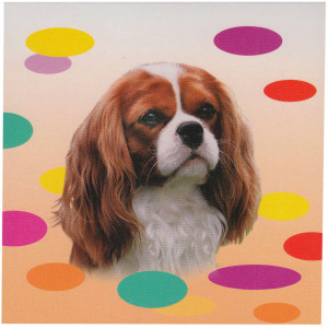 Cavalier Blenheim Brown Pet Dog Magnetic Notepad