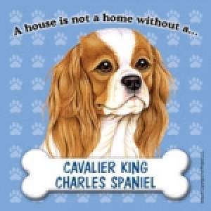 Cavalier King Charles Spaniel Fridge Manget