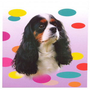 Cavalier Tricolour Dog Magnetic Notepad