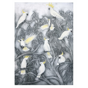 Australian Sulphur Crested Cockatoos Greeting Card by Joseph Austin