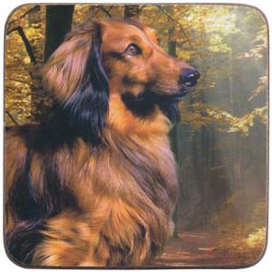 Long Haired Dachshund Dog Cork Backed Drink Coaster