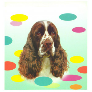 English Springer Spaniel Dog Magnetic Notepad