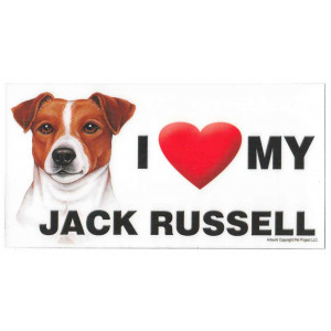 I Love My Jack Russell Dog Fridge Office Fun Magnet
