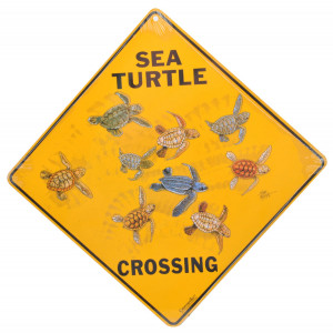 Sea Turtle Crossing Road Sign