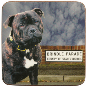 Staffordshire Brindle Dog Cork Backed Drink Coaster
